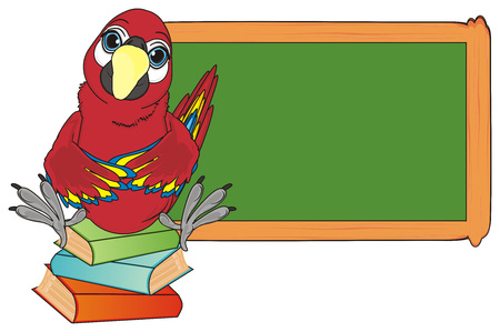 paw smart: red parrot sit top on the books near the clean school board