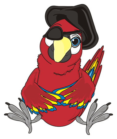 pirate red parrot with black hat and bandage sit Stock Photo