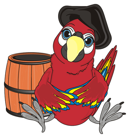 cocked hat: pirate red parrot in black hat sit with empty wooden barrel Stock Photo