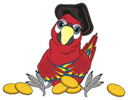 cocked hat: pirate parrot in hat sit near the cents Stock Photo