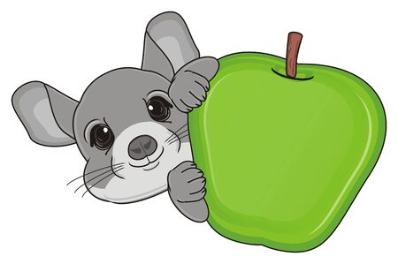 muzzle of chinchilla peek up from large green an apple