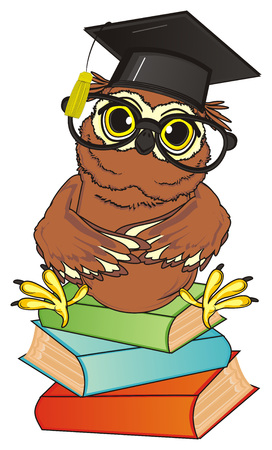 owl in glasses sit top on the books