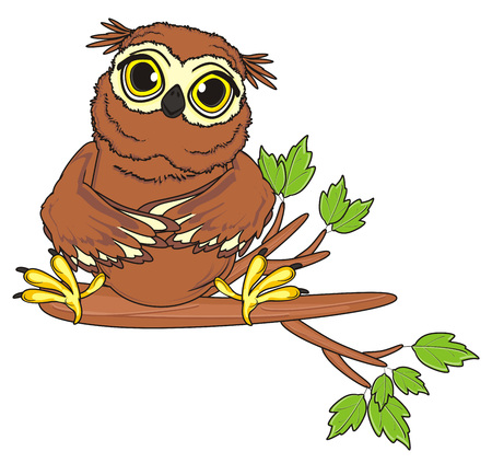 owl sit top on the branch of tree Stock Photo
