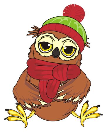 tired owl in winter clothes sit