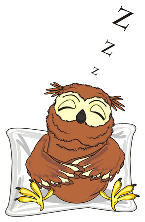 sleeping owl sit on the pillow and signs z fly Stock Photo