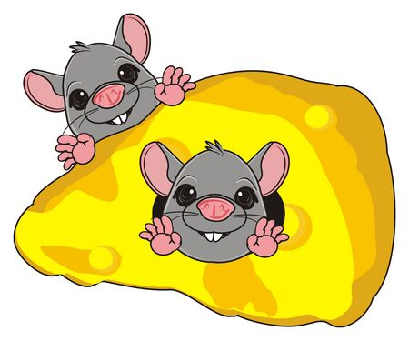 the wrecker: muzzles of couple of gray rats peek up from cheese