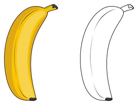 colored banana with coloring banana Banco de Imagens - 76194010