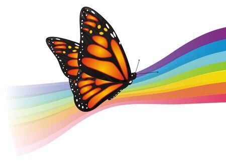 나비는 무지개에 앉는다. 스톡 콘텐츠