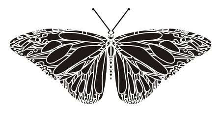 Balck and white butterfly