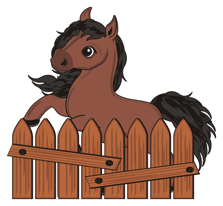 Brown horse peek up from fence Stock Photo