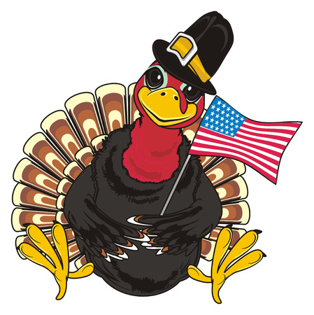 Turkey in hat sit and hold USA flag