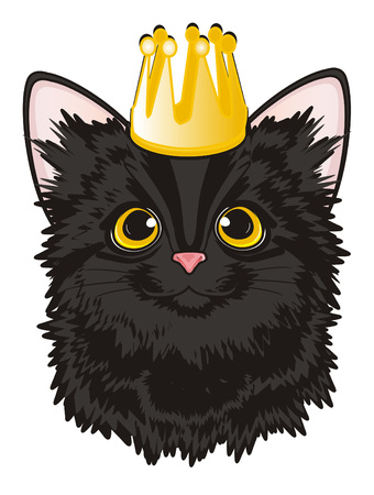 Muzzle of black cat with golden crown