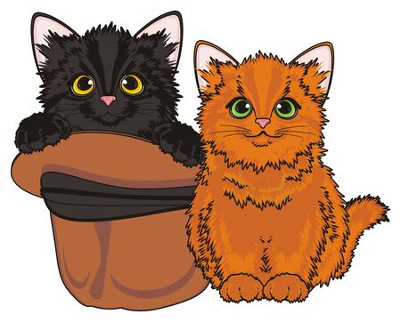 stick out: Two different cats sits Stock Photo