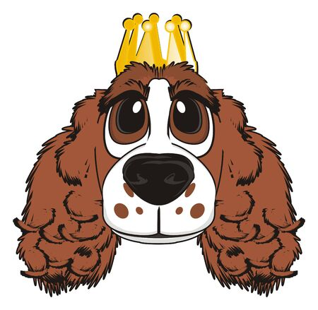 Snout of spaniel with golden crown Stock Photo