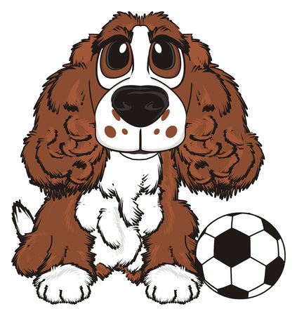 Brown spaniel sit with a soccer ball