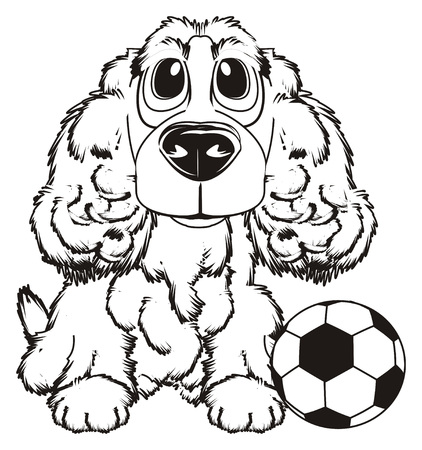 curly tail: Coloring spaniel with a soccer ball
