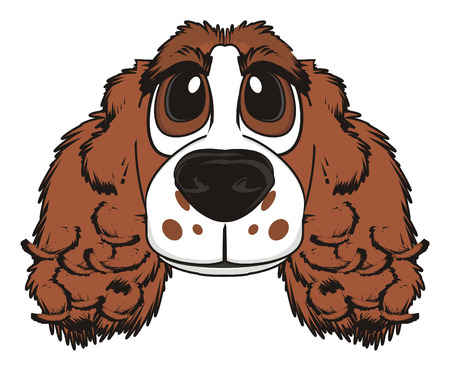 good friends: Snout of brown spaniel