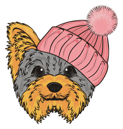 Snout of yorkshire terrier girl in pink warm hat