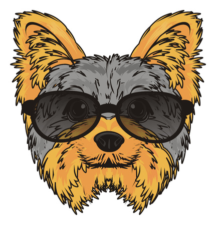 Face of yorkshire terrier in black sunglasses