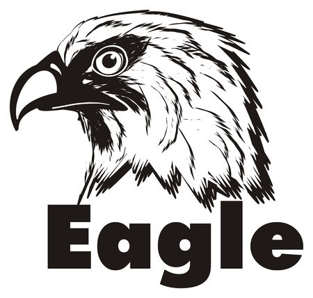 Black and white head of eagle with his name
