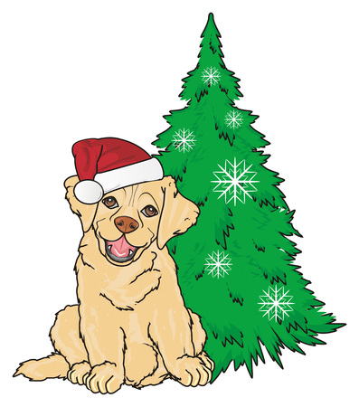 labrador in red hat sith near the christmas tree Stock Photo