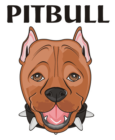 snout of pitbull and word pitbull Stock Photo