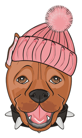 snout ofpitbull in warm pink hat
