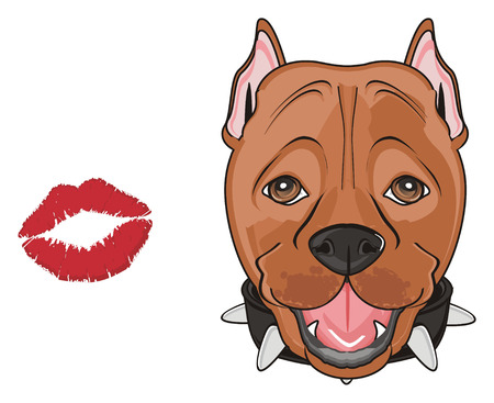 muzzle of a pitbull with red kiss