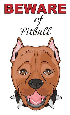 kampfhund: Schnauze der Pitbull mit Inschrift