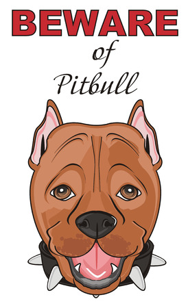 snout of pitbull with inscription