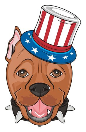 snou tofpitbull in hat with USA flag Stock Photo