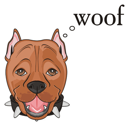 face of pitbull with word woof