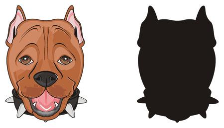brązowy pysk pitbulla z solidnym czarnym pyskiem pitbulla Zdjęcie Seryjne