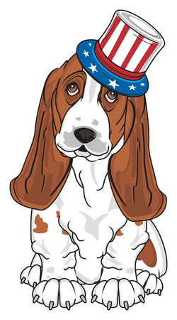 barking: basset hound in hat with American flag sit