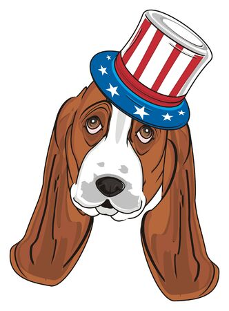 muzzle of basset hound in hat with USA flag Stock Photo