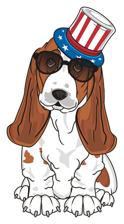 basset hound in sunglasses and USA hat Stock Photo