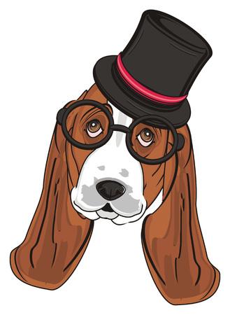 Muso di basset hound in cappello nero e occhiali Archivio Fotografico - 89119112