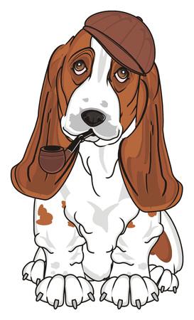 basset hound sit and smoke