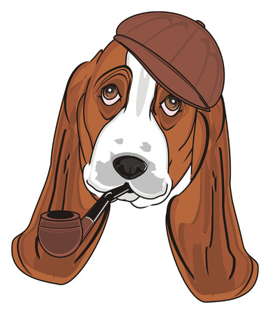 snout of basset hound in cap with pipe