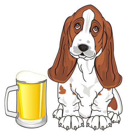 Basset hound con un bicchiere pieno di birra Archivio Fotografico - 89119322