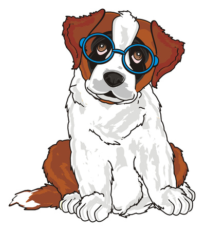 st. bernard with blue glasses Stock Photo