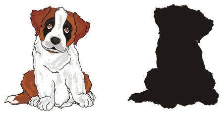 colored st. bernard with solid black dog Banco de Imagens
