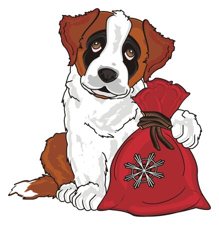 puppy of st. bernard sit and hold a bag