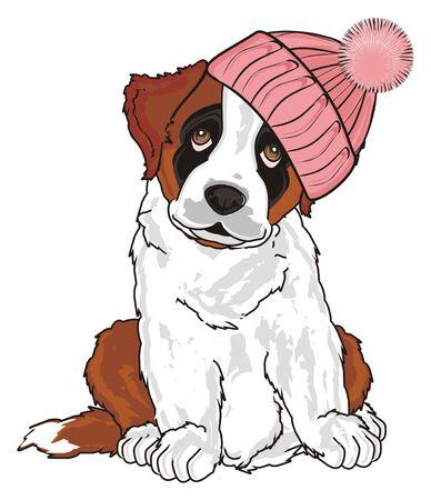 st. bernard girl in pink warm winter hat sit