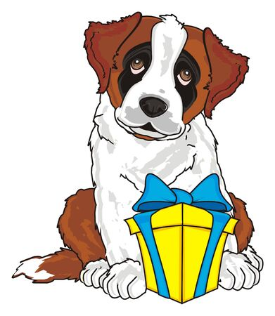 barking: st. bernard with a gift