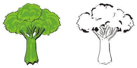 green broccoli with coloring broccoli