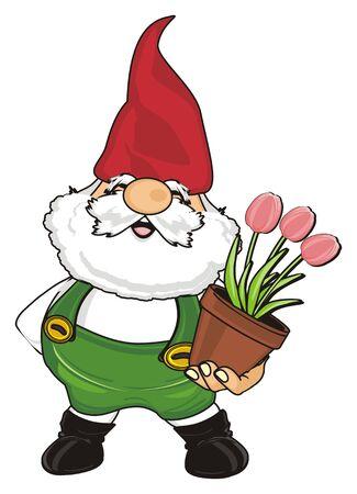 Lächelnder Gnome , der eine rosa Tulpen hält Standard-Bild - 91123364