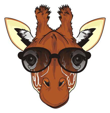 muzzle of giraffe in sunglasses