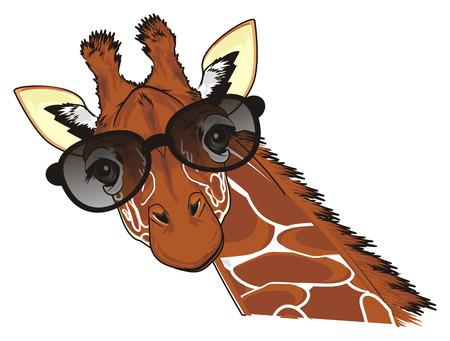 giraffe in black sunglasses Stock Photo