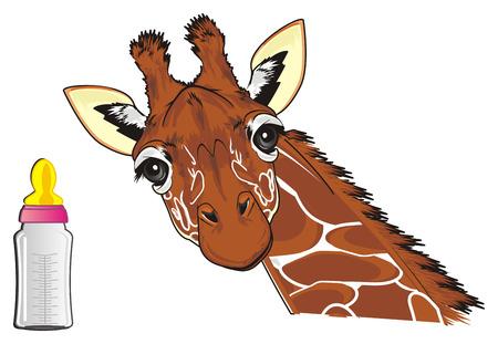 giraffe and bottle of milk Standard-Bild